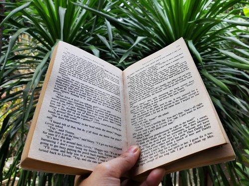 book  open book  open
