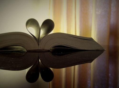 open book book heart
