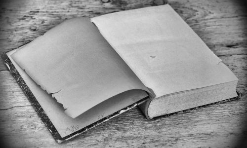 book old empty pages