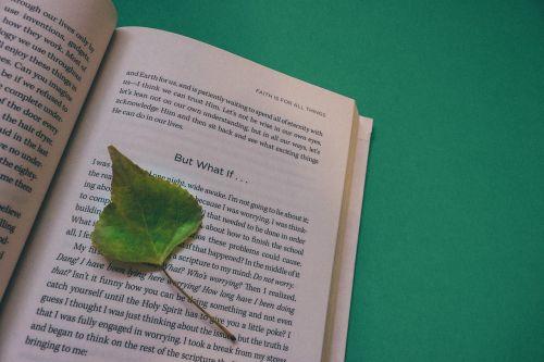 book open book leaf