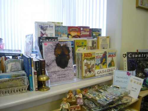 Book On Display In Shop