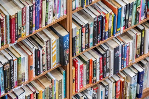 bookcase  shelf  library