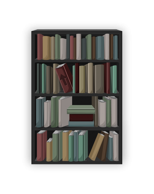 bookcase books shelf