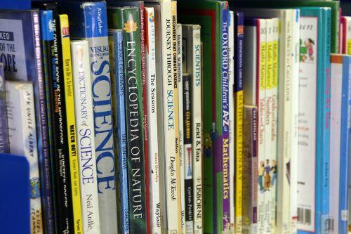 books shelf organized