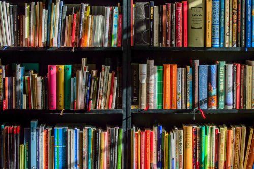 books bookstore book