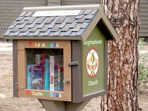 books reading little library
