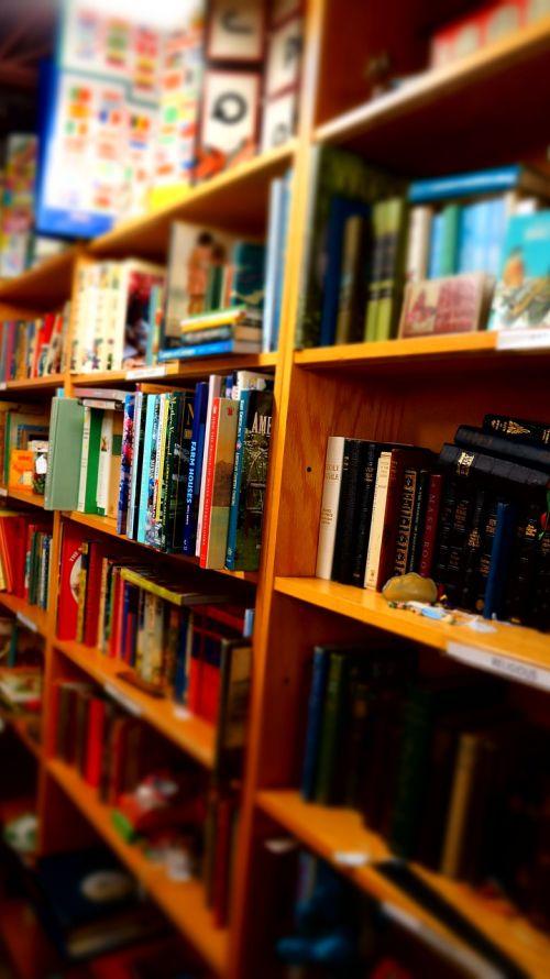 books wooden shelves library