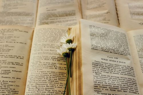books flower page
