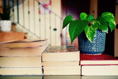 books leisure reading