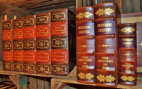 books antiquariat leather covers