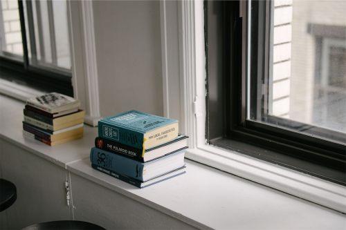 books window literature