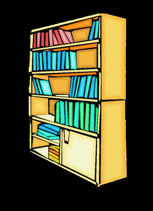 books bookcase library