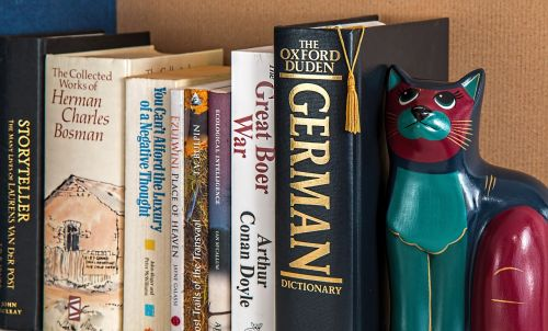 bookshelf books reading