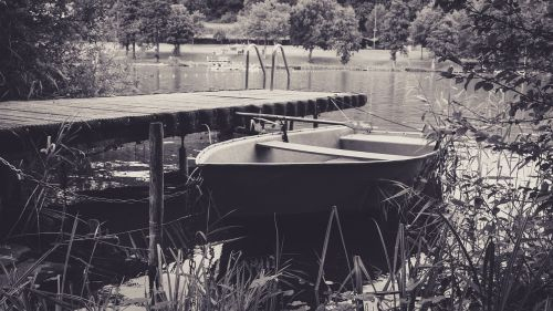 boot web rowing boat