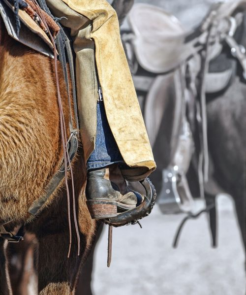 boot cowgirl horse