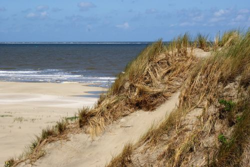 borkum north sea beach