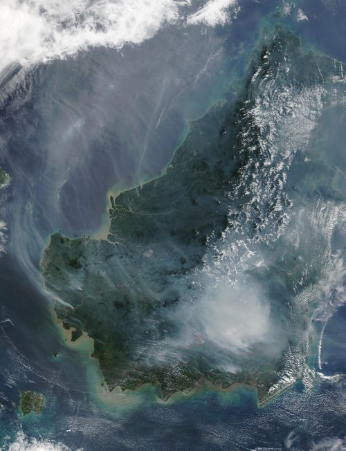 borneo forest fire satellite image