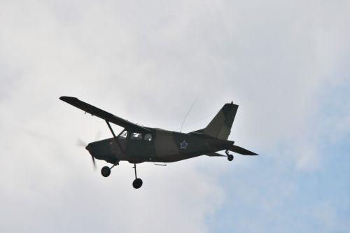 Bosbok In The Air