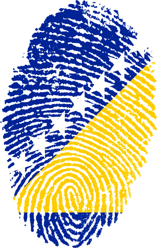 bosnia and herzegovina flag fingerprint