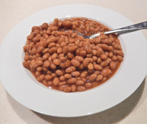 boston baked beans molasses brown sugar