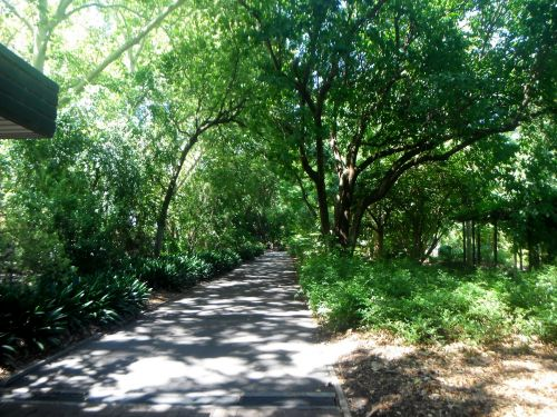 Botanic Parkland