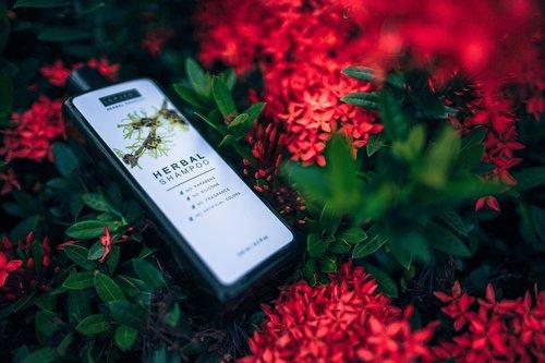 botanical  aromatic  beauty