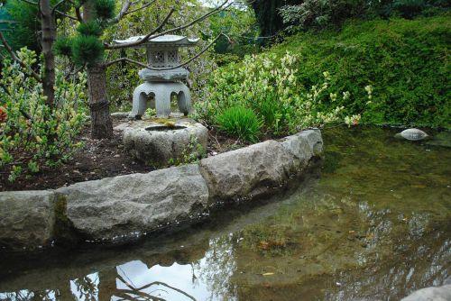 botanical garden water pond
