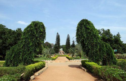 botanical garden trees park