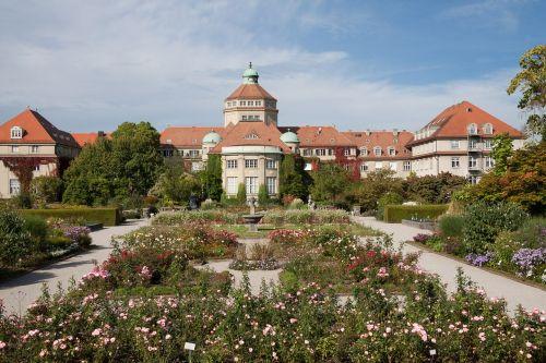 botanical garden munich garden