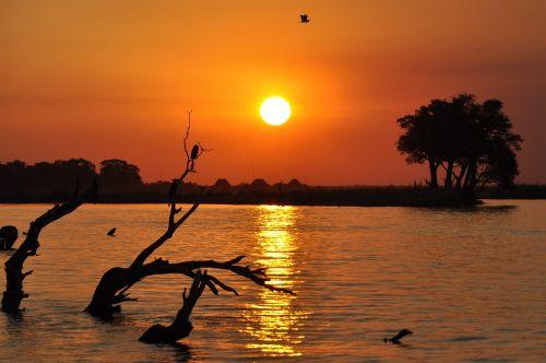 botswana sunset chobe