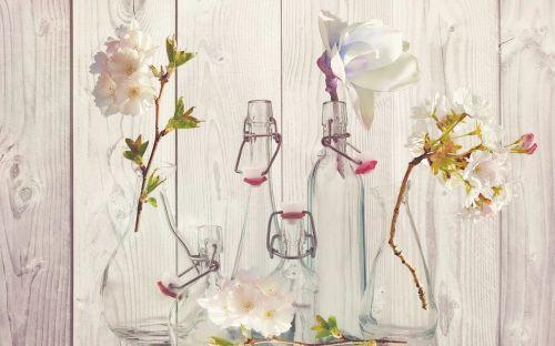 bottles vases flower vases