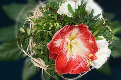 bouquet amaryllis red