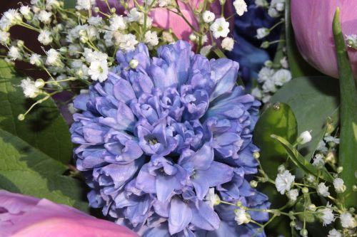 bouquet hyacinth gypsophila