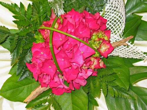 bouquet birthday hydrangea