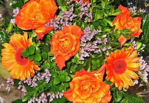 bouquet gerbera flowers