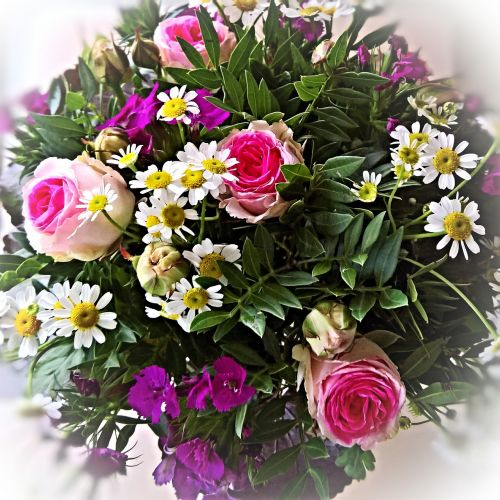 bouquet pink red roses small daisies