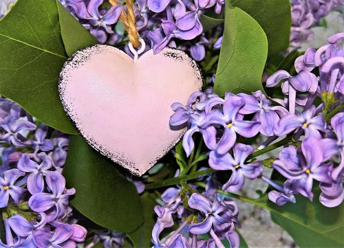 bouquet  lilac bouquet  with heart