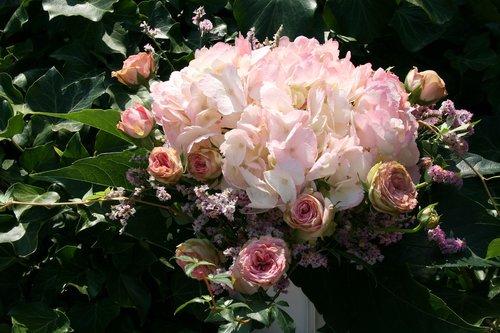 bouquet  hydrangeas  roses