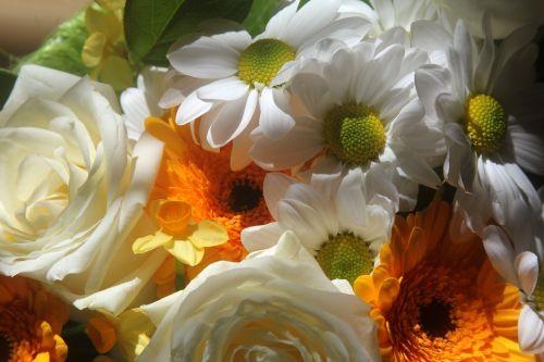 bouquet of flowers bouquet white