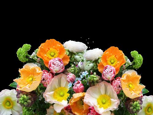 bouquet of flowers cut flowers flowers