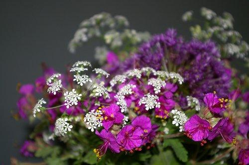 bouquet of flowers  filigree  cranesbill