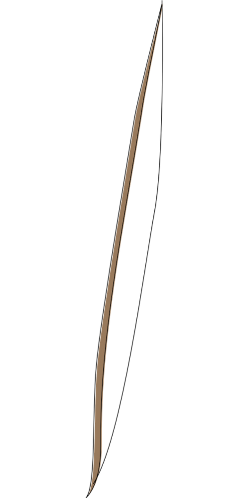 bow weapon archer