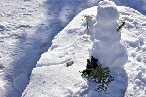 Bow Tie Kitty Snowman