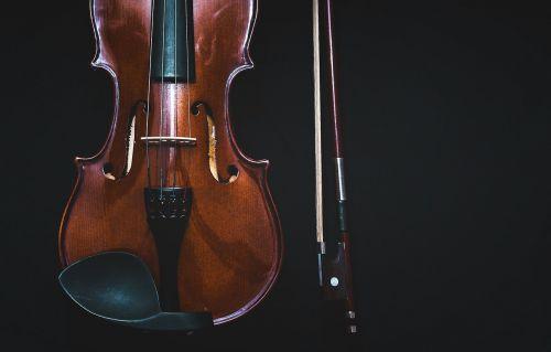 bowed instrument bowed stringed instrument instrument