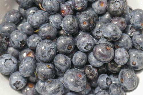 bowl  blueberries  fresh
