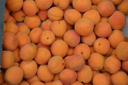 Box Of Apricots