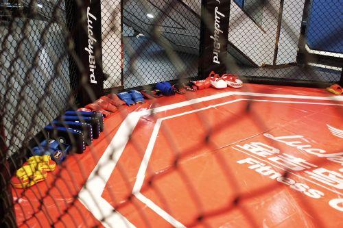 boxing weights sanda