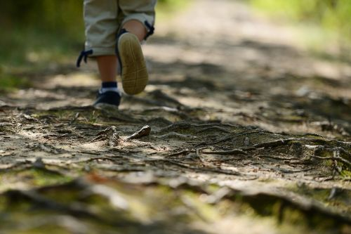 child wandering the path