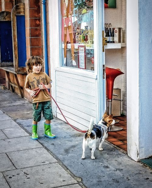 boy dog street market
