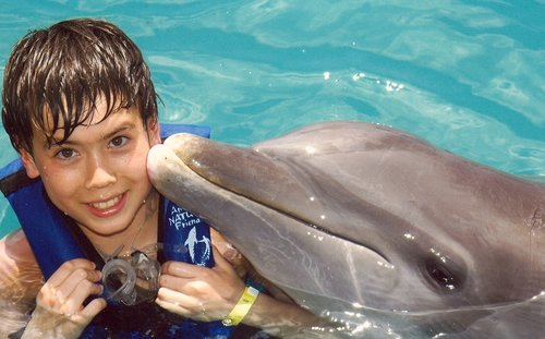 boy  dolphin  louis